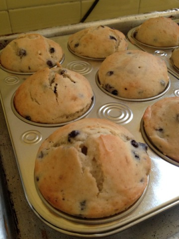 muffin16a